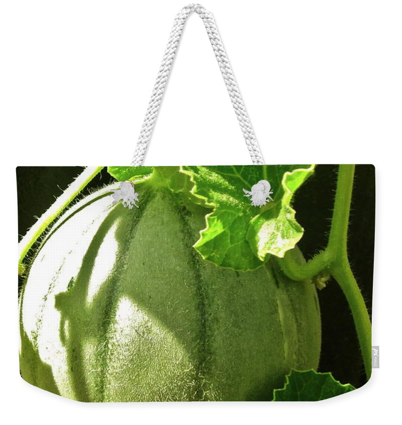 Photograph Of Melon Weekender Tote Bag featuring the photograph Mellow Mellon by Gwyn Newcombe