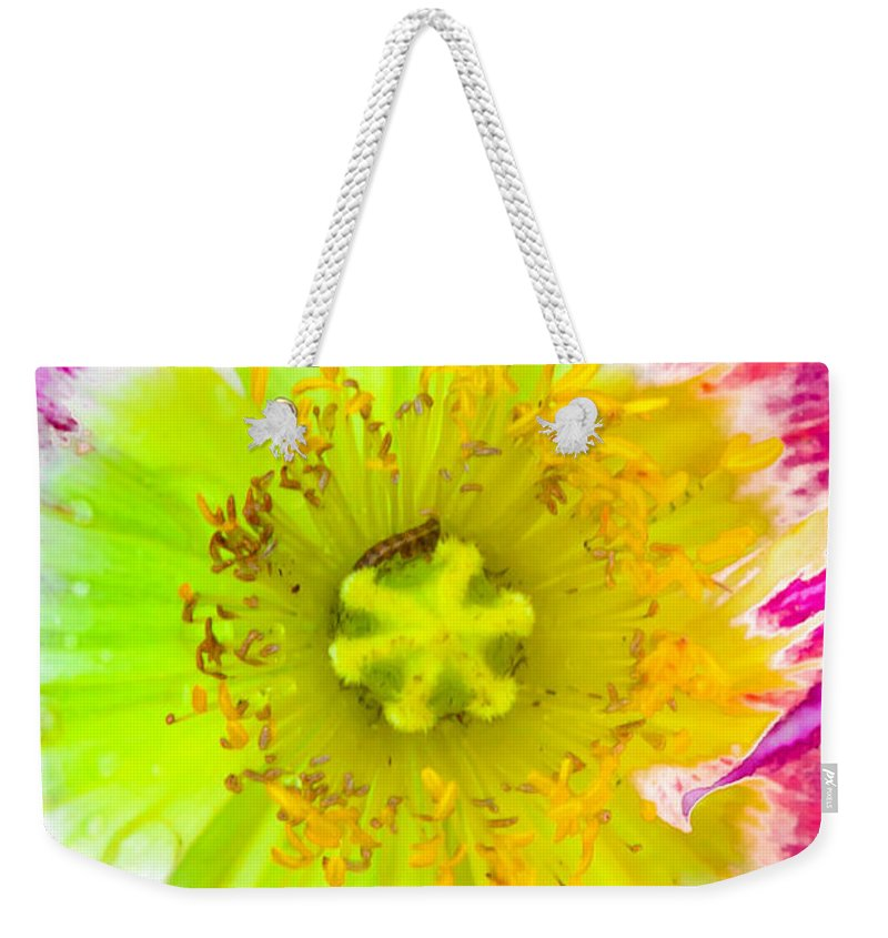 Petals Weekender Tote Bag featuring the photograph Melting Pot by Az Jackson