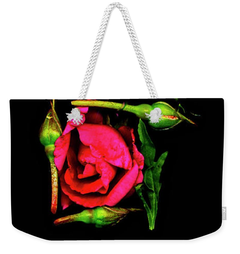 Rocky Mountain Wildflowers Scanned And Imported To Compose Hebrew Letters To Spell Out Shalom Weekender Tote Bag featuring the digital art Mem - Last Hebrew Letter In Shalom by Sterling Haidt