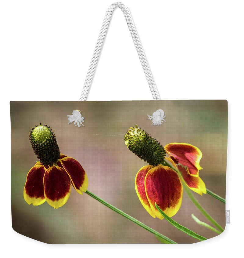 Mexican Hat Weekender Tote Bag featuring the photograph Mexican Hat by David Werner