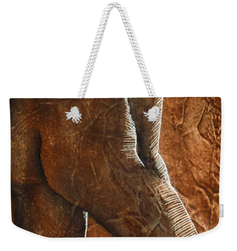 Nude Weekender Tote Bag featuring the painting Mickey Xx by Richard Hoedl
