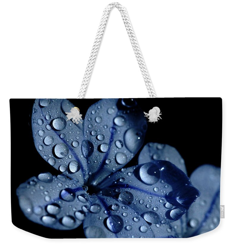Blue Weekender Tote Bag featuring the photograph Midnight Dew by Donna Blackhall