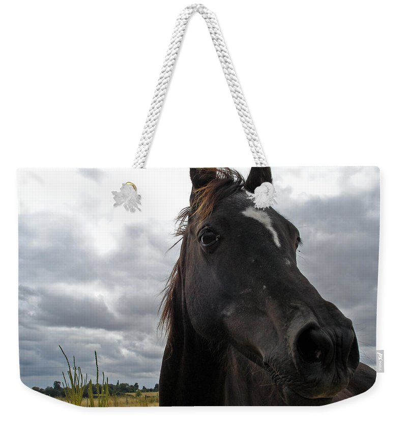 Black Beauty Weekender Tote Bag featuring the photograph Midnight Melody by Susan Baker