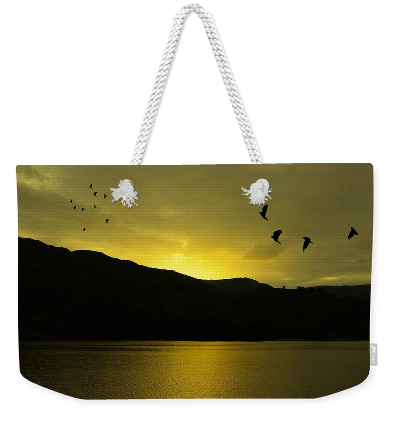 Landscape Weekender Tote Bag featuring the photograph Migration by Martin Newman