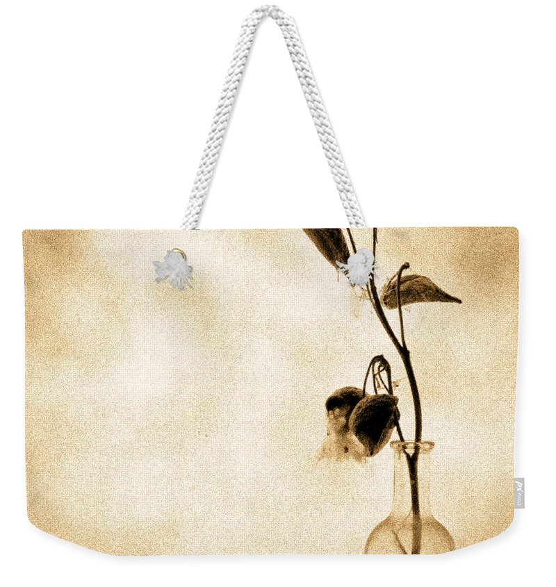 Plant Weekender Tote Bag featuring the photograph Milk Weed In A Bottle by Bob Orsillo