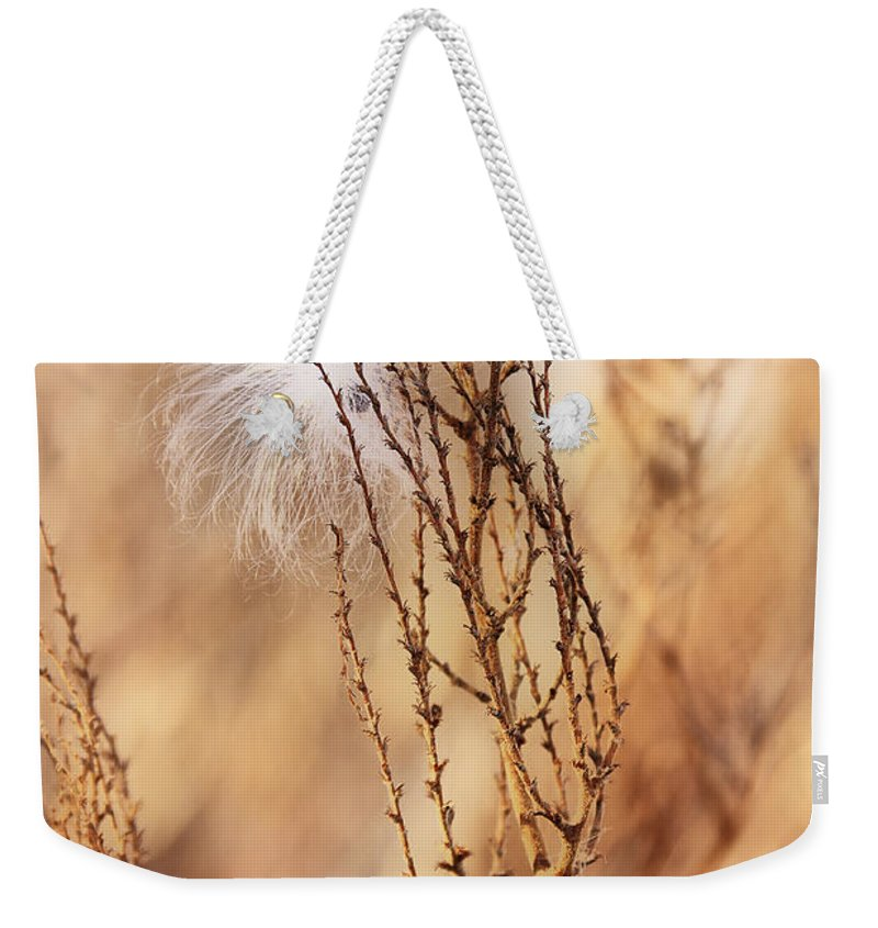 Milkweed Weekender Tote Bag featuring the photograph Milkweed In The Breeze by Deborah Benoit