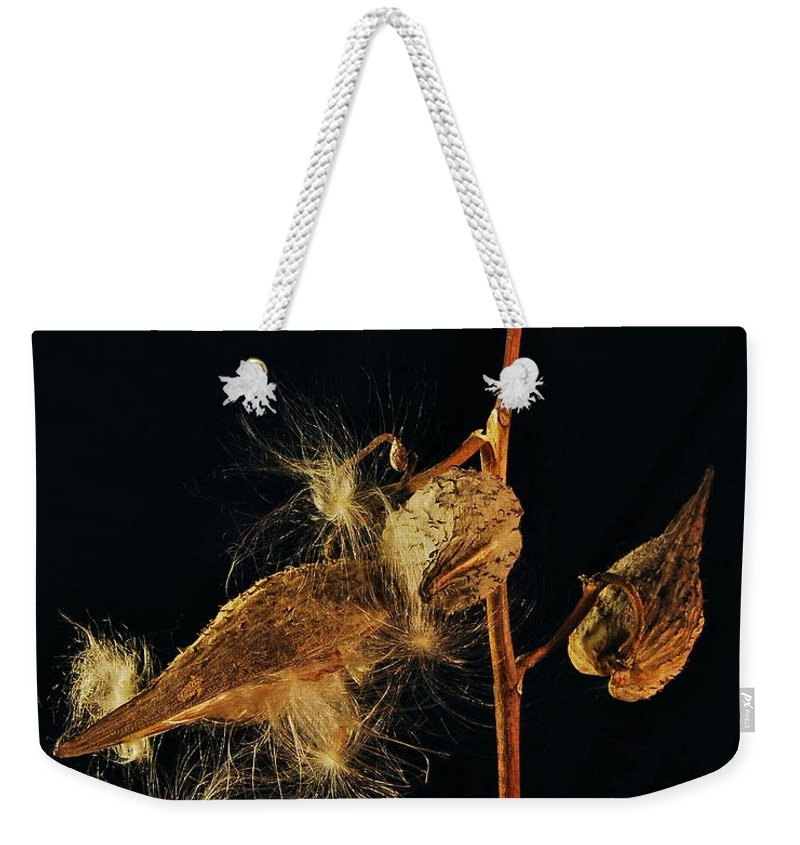 Mgp Photography Weekender Tote Bag featuring the photograph Milkweed Pods by Michael Peychich