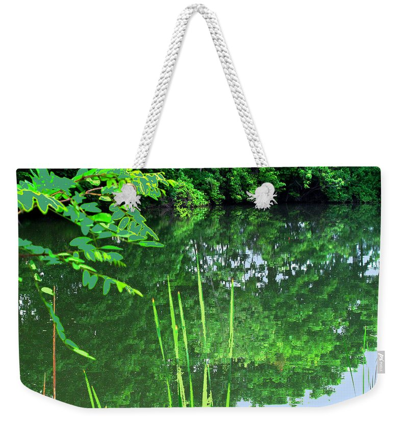 Black Creek Weekender Tote Bag featuring the photograph Mill Pond Reflections by Ian MacDonald