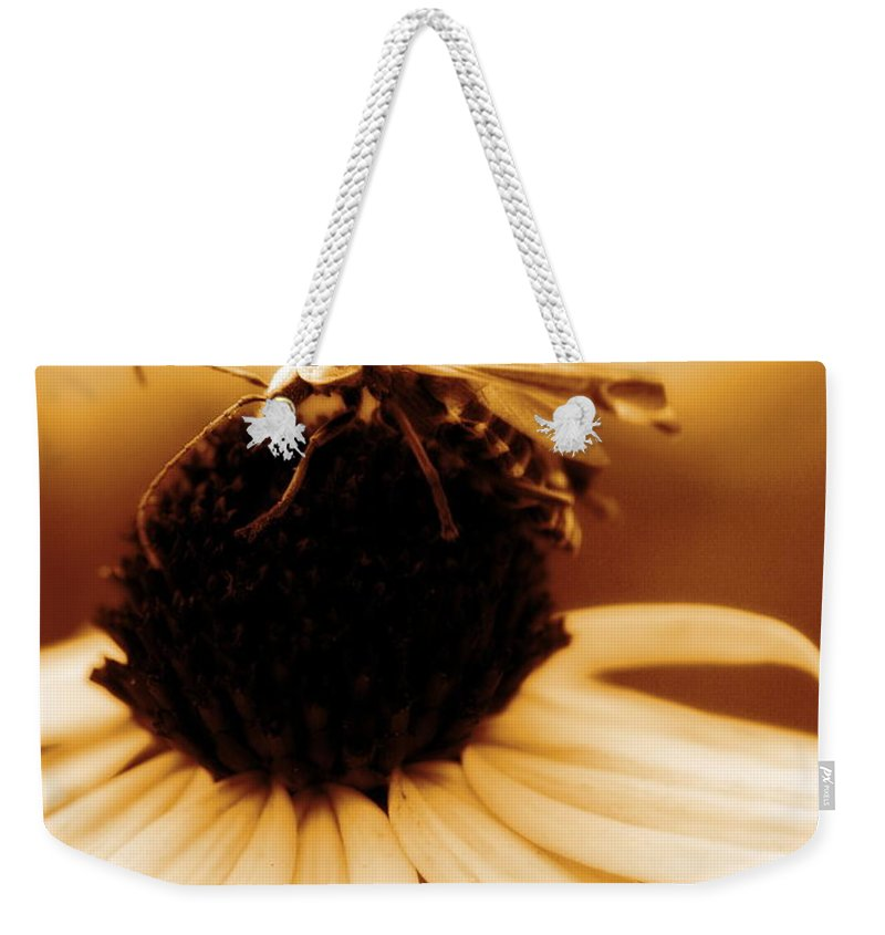 Black Eyed Susan Weekender Tote Bag featuring the photograph Mimic by Angela Rath