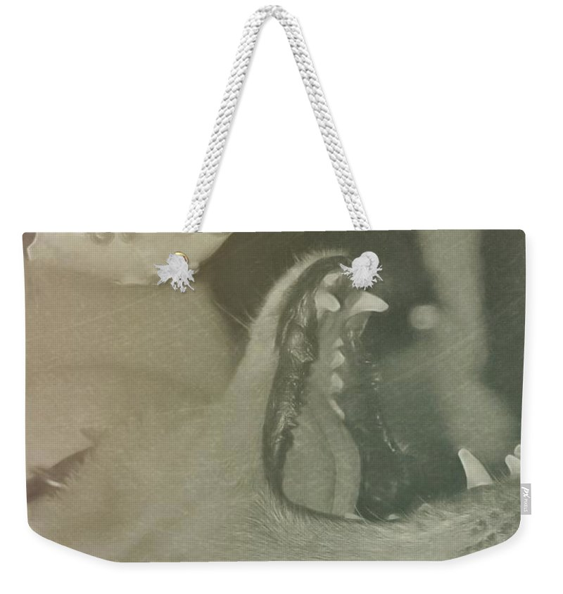 Dog Weekender Tote Bag featuring the photograph Mine Quote by JAMART Photography