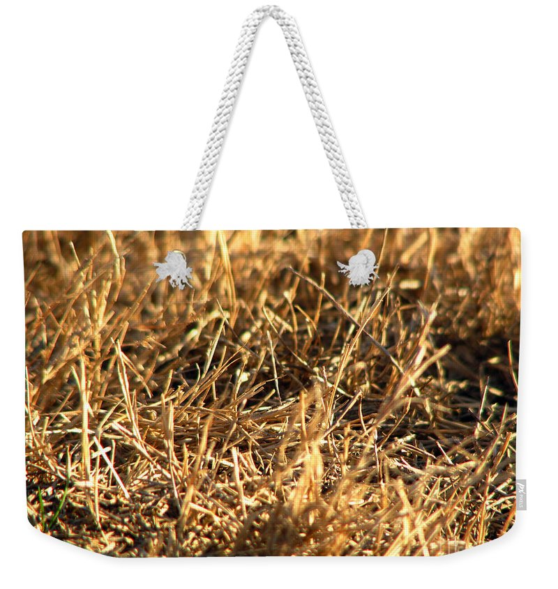 Grass Weekender Tote Bag featuring the photograph Mirrors by Amanda Barcon