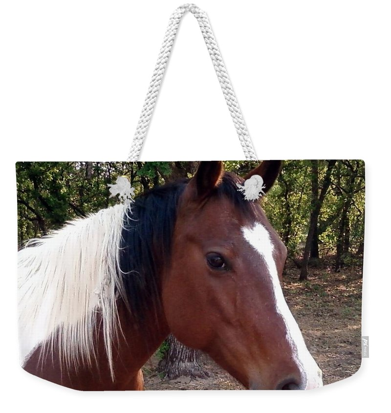 Paint Horse Weekender Tote Bag featuring the photograph Missy 1 by Cindy New