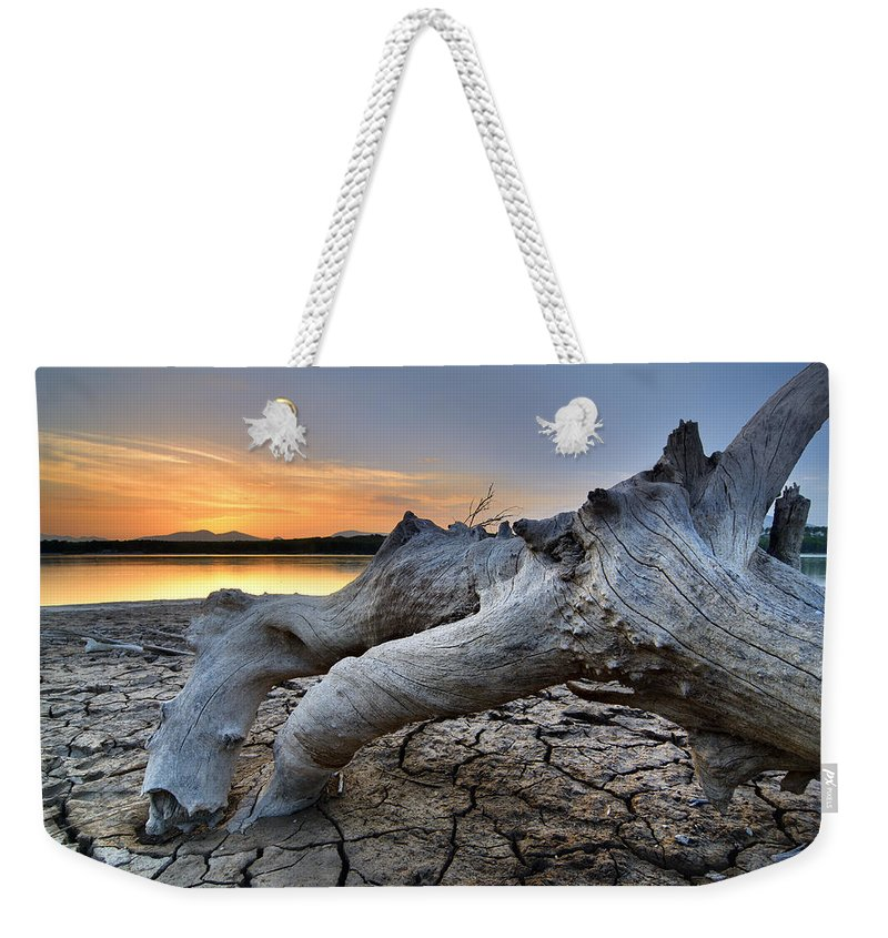Water Weekender Tote Bag featuring the photograph Mistery Old Tree by Guido Montanes Castillo