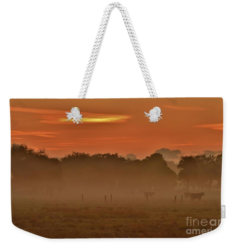 Misty Ranch Weekender Tote Bag featuring the photograph Misty Ranch by Lisa Renee Ludlum
