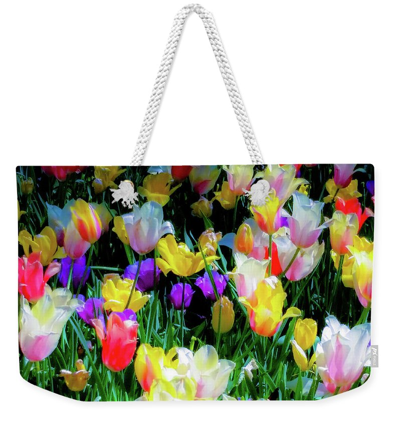 Tulips Weekender Tote Bag featuring the photograph Mixed Tulips In Bloom by D Davila