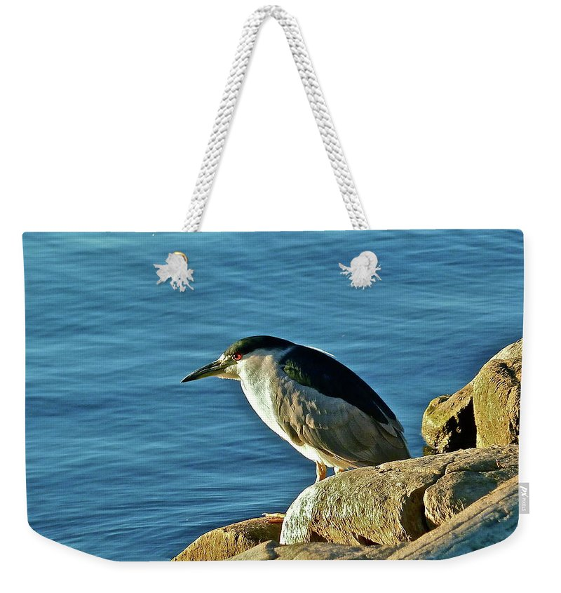 Birds Weekender Tote Bag featuring the photograph Mixed Up by Diana Hatcher