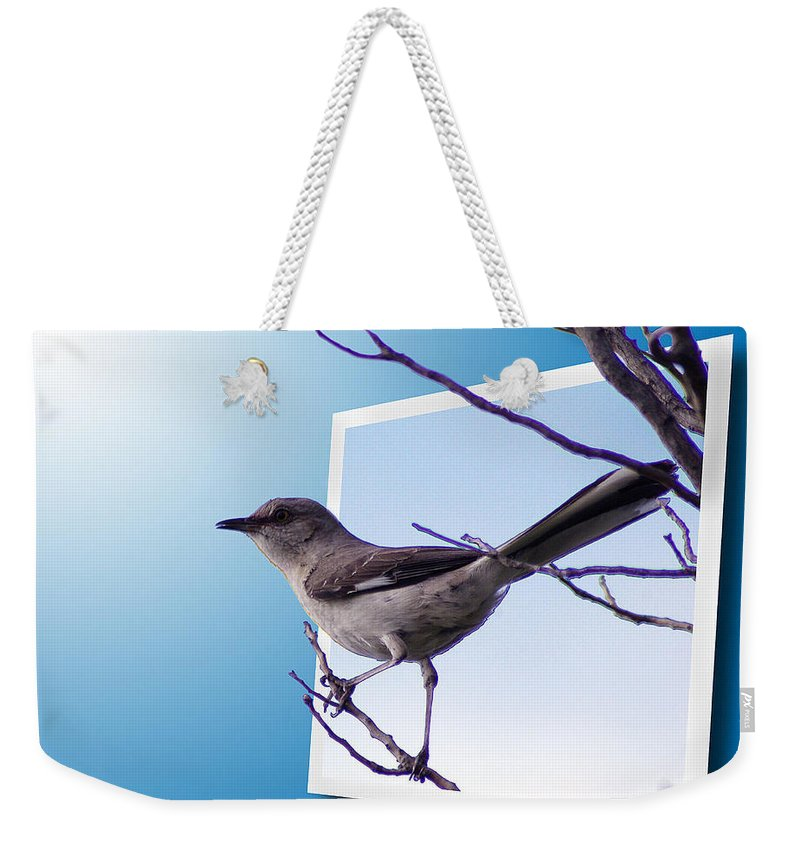 2d Weekender Tote Bag featuring the photograph Mockingbird Branch by Brian Wallace