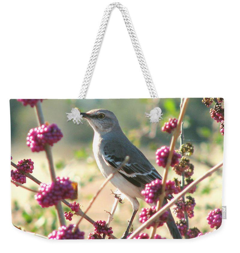 Nature Weekender Tote Bag featuring the photograph Mockingbird Heaven by Peg Urban