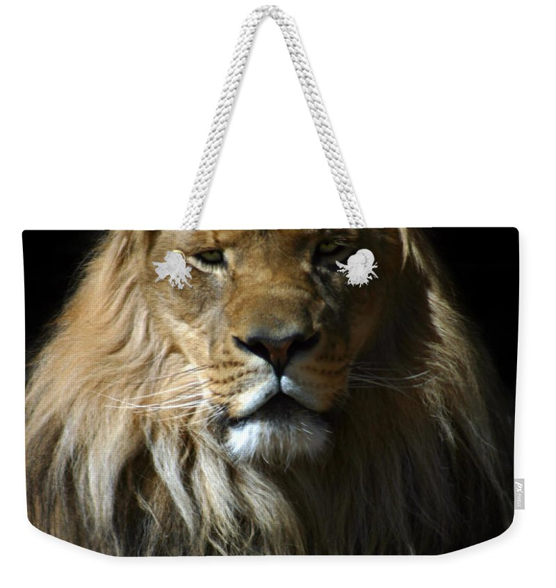 Lion Weekender Tote Bag featuring the photograph Mohawk by Anthony Jones