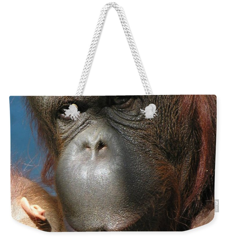 Mother Weekender Tote Bag featuring the photograph Mom Protection by Diane Greco-Lesser