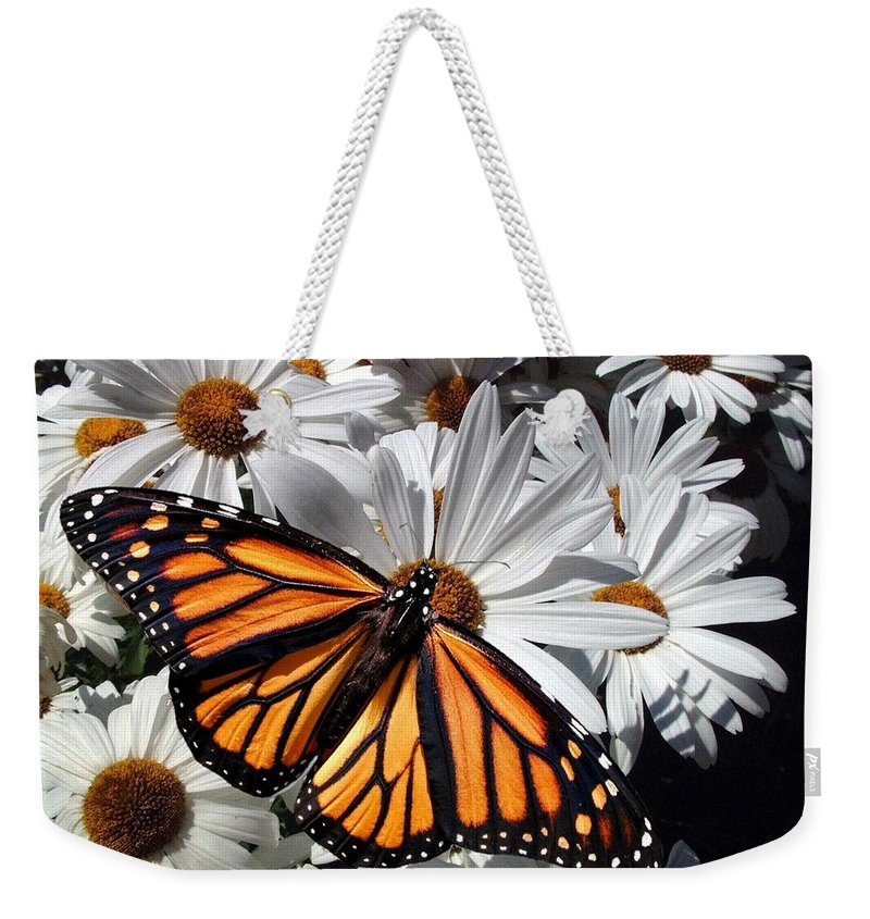 Monarch Weekender Tote Bag featuring the photograph Monarch Butterfly by E Clifford