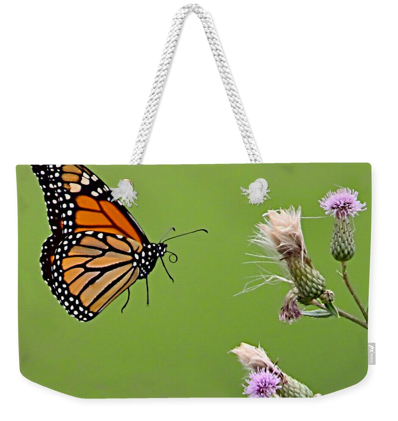 Butterfly Weekender Tote Bag featuring the photograph Monarch Butterfly by William Jobes
