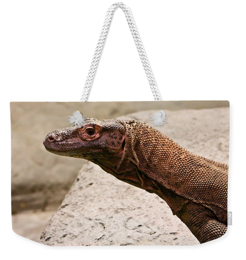 Monitor Weekender Tote Bag featuring the photograph Monitor Lizard by Douglas Barnett