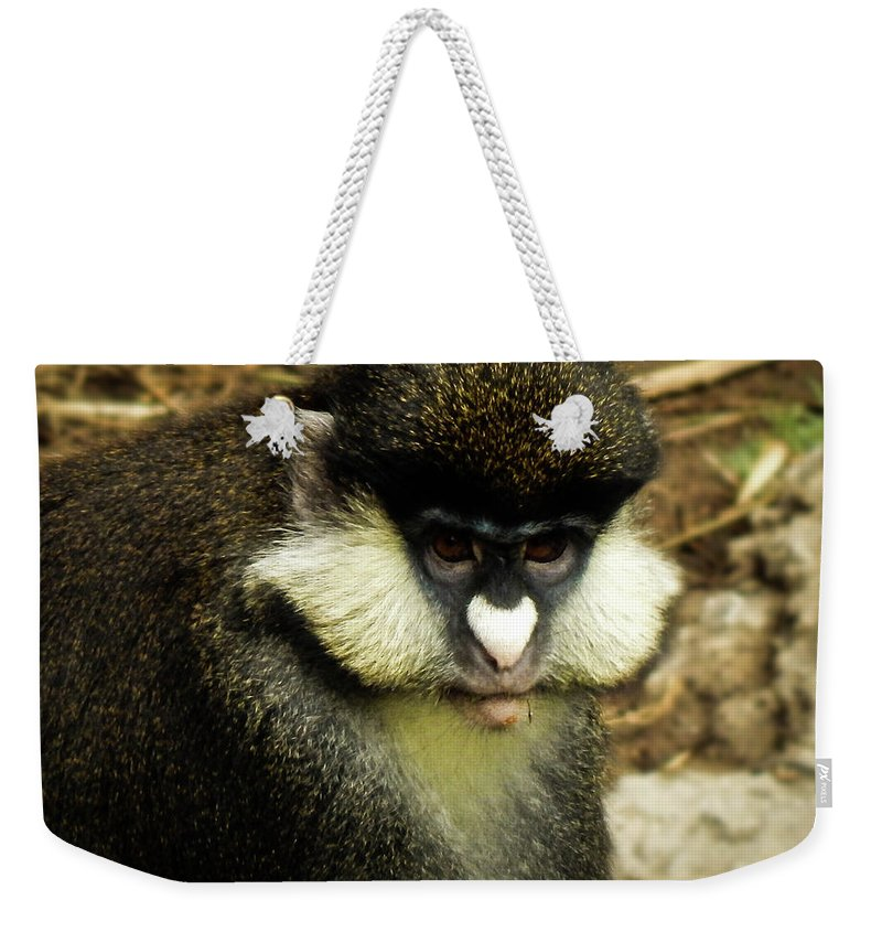 Monkey Weekender Tote Bag featuring the photograph Monkey by Kristie Ferrick