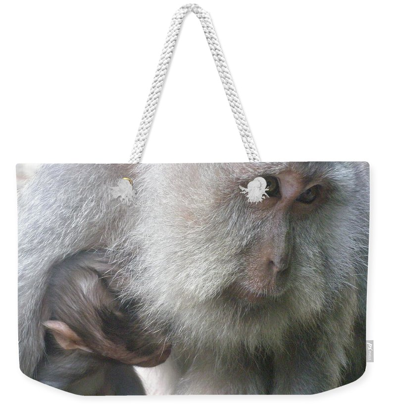Bali Weekender Tote Bag featuring the photograph Monkey Mother 3 by Mark Sellers