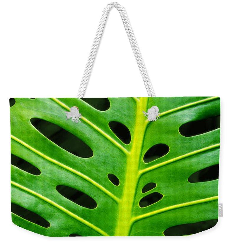 Tropical Plants Weekender Tote Bags