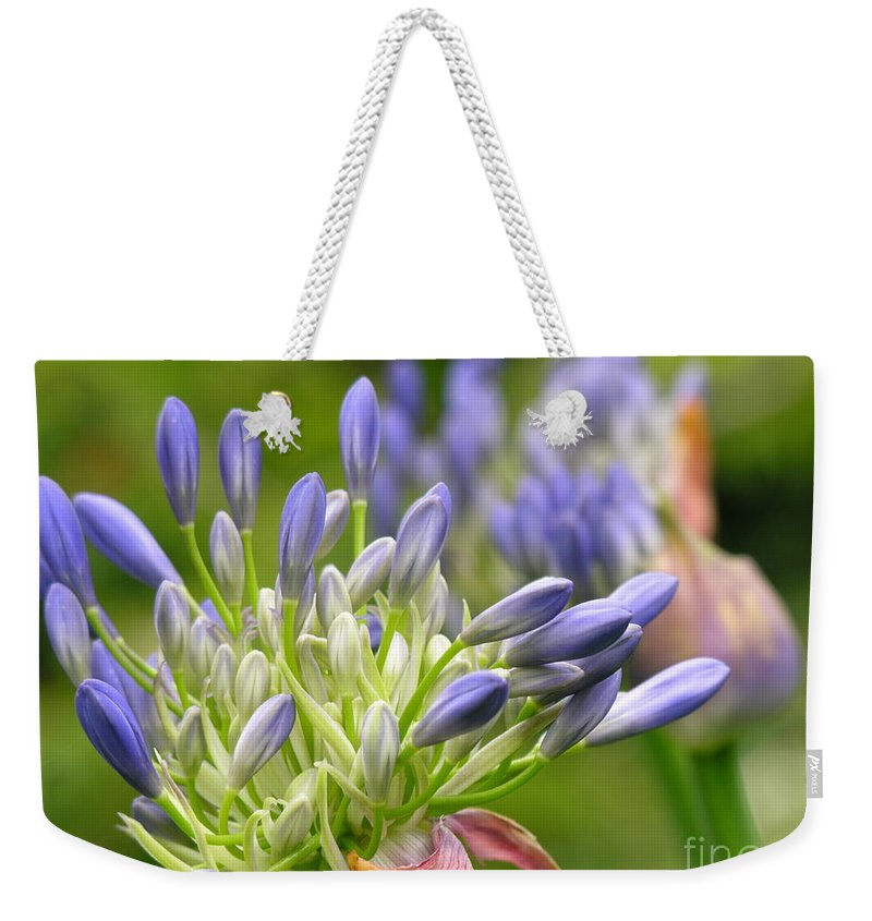 Blue Weekender Tote Bag featuring the photograph Montana Purple And Blue by Diane Greco-Lesser