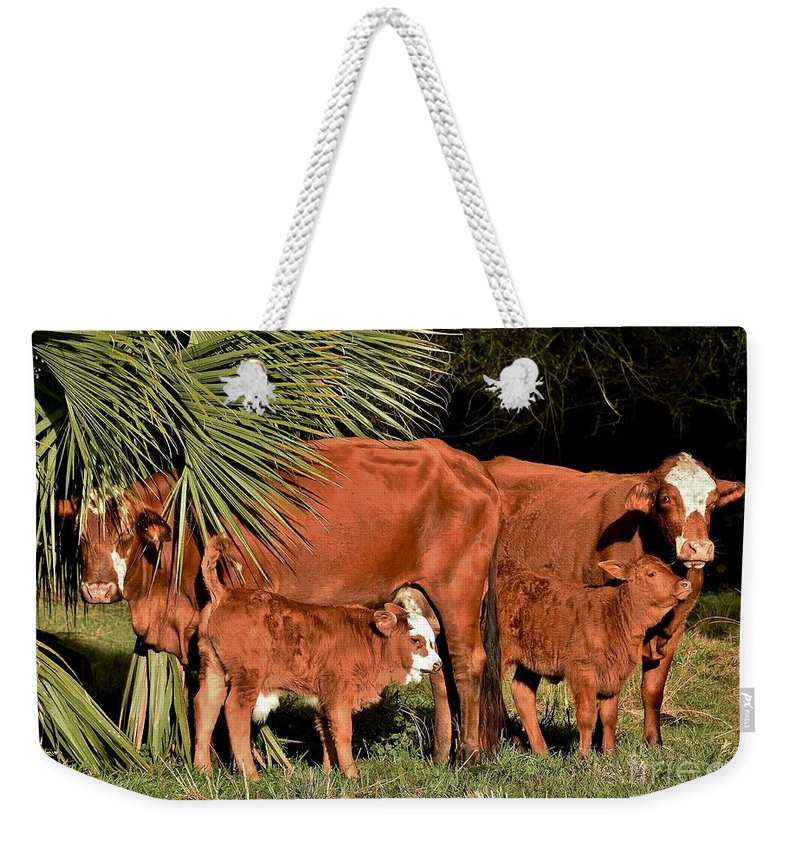 We Are Family Weekender Tote Bag featuring the photograph We Are Family by Lisa Renee Ludlum
