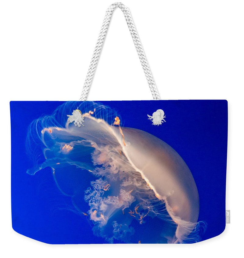 Jellyfish Weekender Tote Bag featuring the photograph Moon Jelly Series #3 by Patti Deters