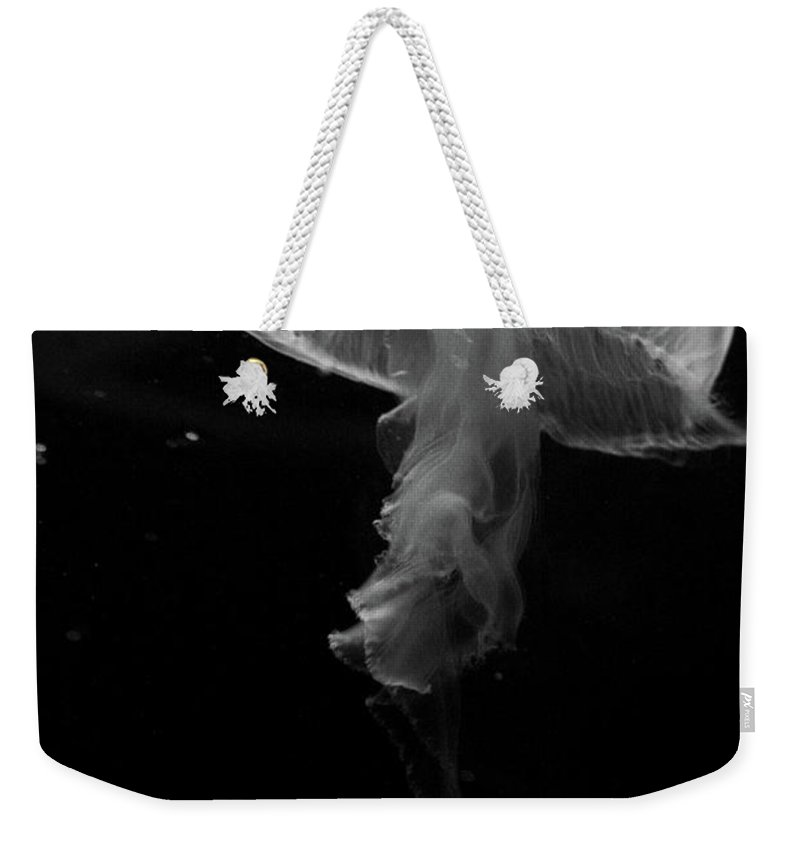Moon Jelly Weekender Tote Bag featuring the photograph Moon Jellyfish In Bw by Selena Wagner
