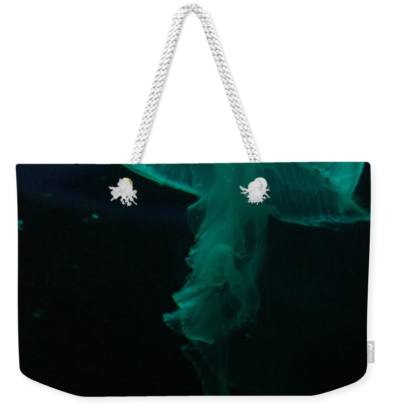 Moon Jelly Weekender Tote Bag featuring the photograph Moon Jellyfish by Selena Wagner