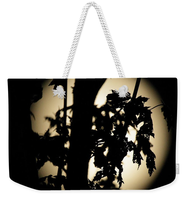 Kooldnala Weekender Tote Bag featuring the photograph Moonlit Leaves No 1 by Alan Look