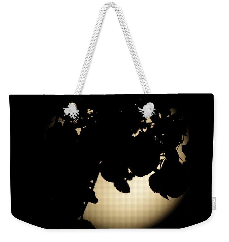 Kooldnala Weekender Tote Bag featuring the photograph Moonlit Leaves No 2 by Alan Look