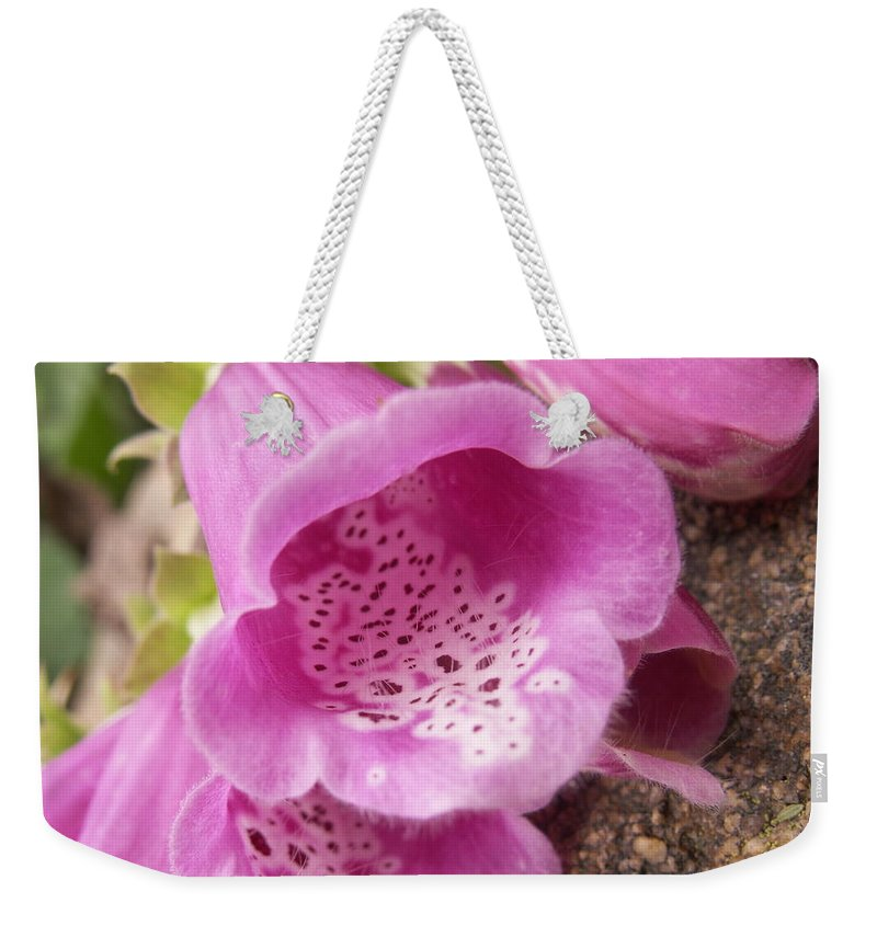 Flower Weekender Tote Bag featuring the photograph More Pink Bells by Alexis Ketner