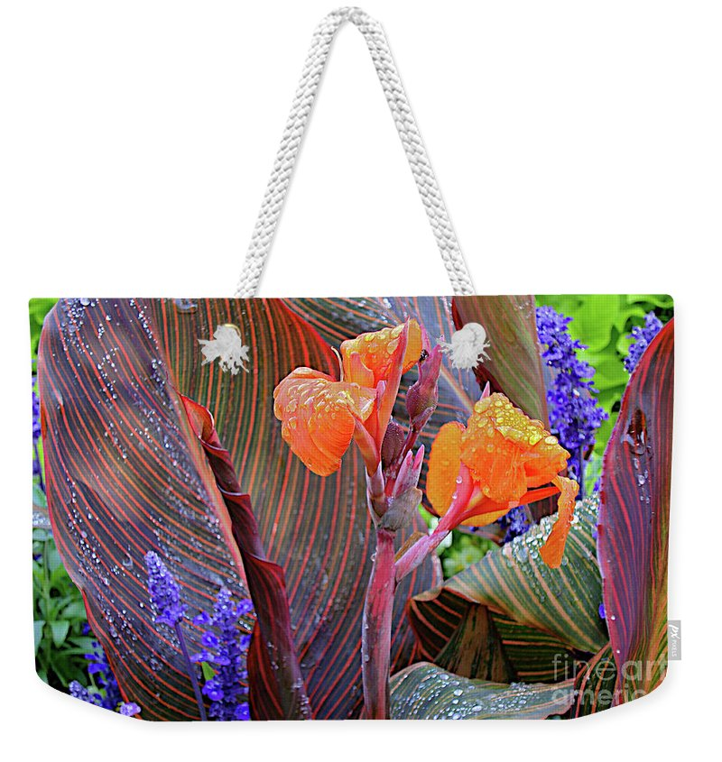 Michigan State University Weekender Tote Bag featuring the photograph Morniing Rain by Joseph Yarbrough