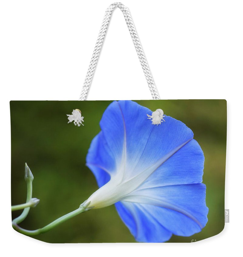 Flower Weekender Tote Bag featuring the photograph Morning Blues by Claudia Kuhn