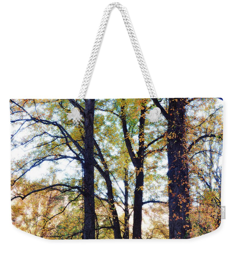 Smokey Mountain Weekender Tote Bag featuring the photograph Morning by Brittany Horton