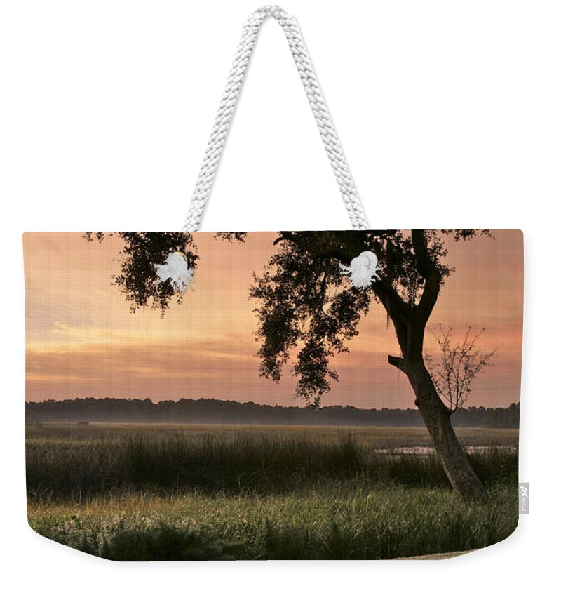 Tree Weekender Tote Bag featuring the photograph Morning Dew by Phill Doherty