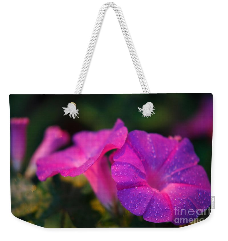 Flora Weekender Tote Bag featuring the photograph Morning Glory by Gaspar Avila