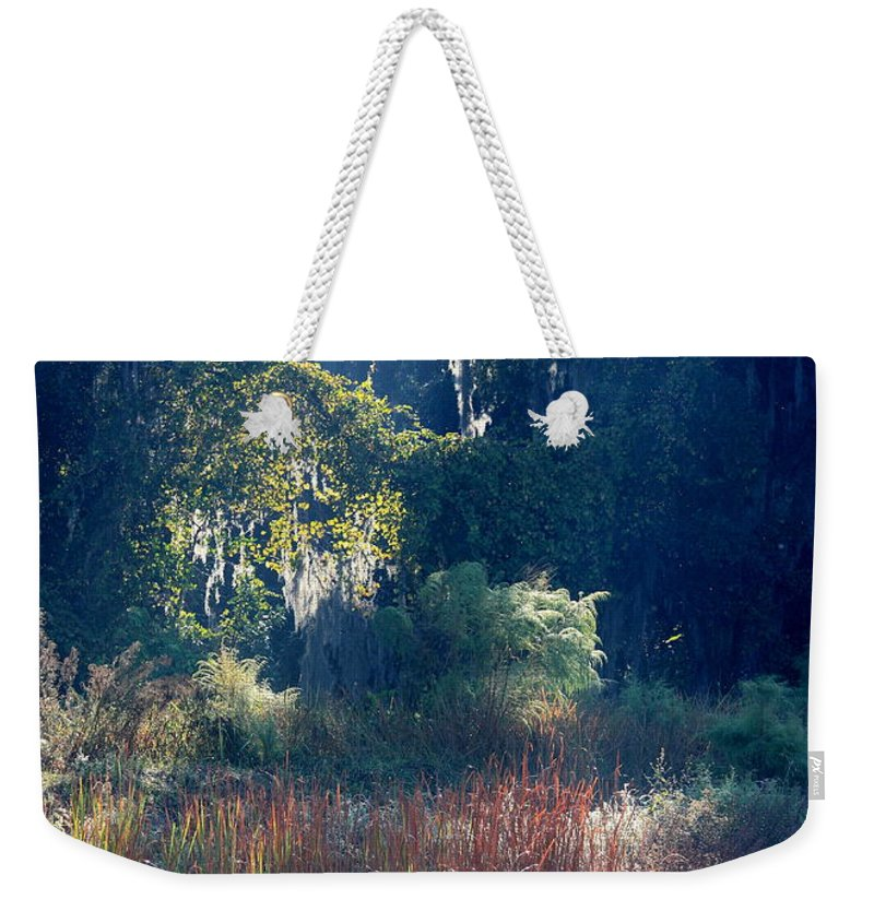 Sunshine Weekender Tote Bag featuring the photograph Morning Marsh Sunshine by Carol Groenen