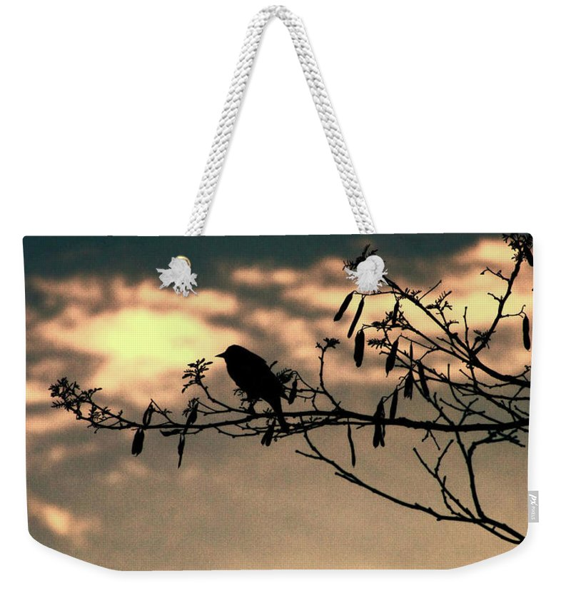 Landscape Weekender Tote Bag featuring the photograph Morning Melody by Megan Miller