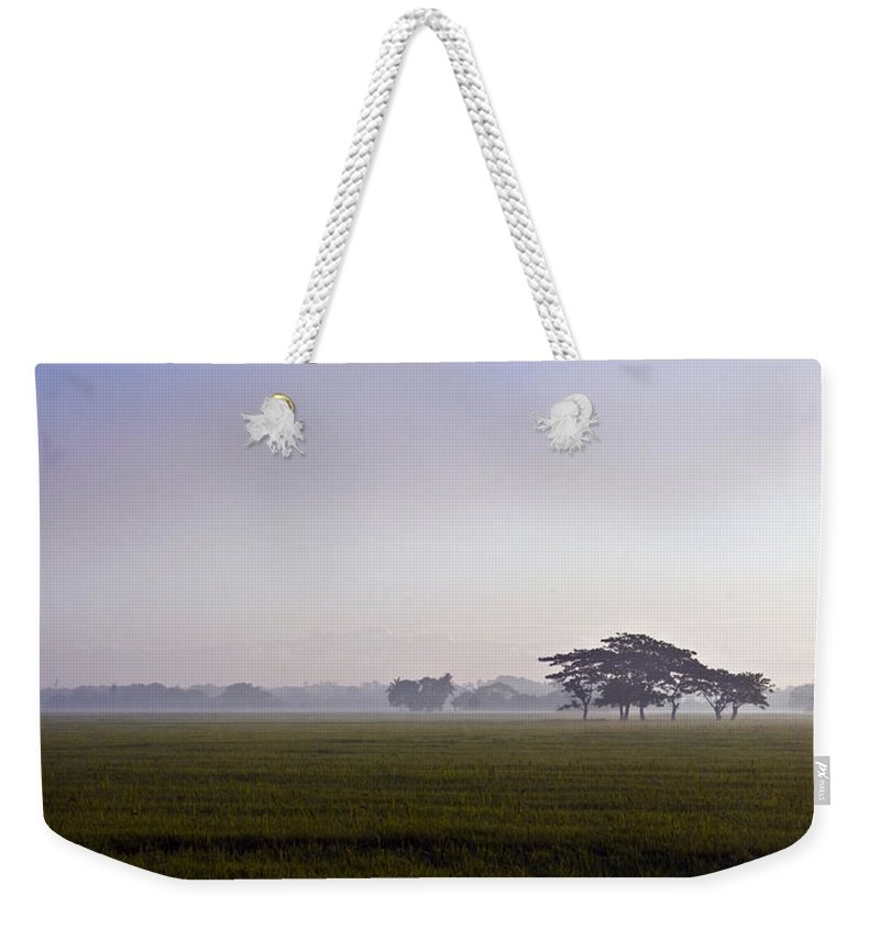 Nature Weekender Tote Bag featuring the photograph Morning Mist by George Cabig