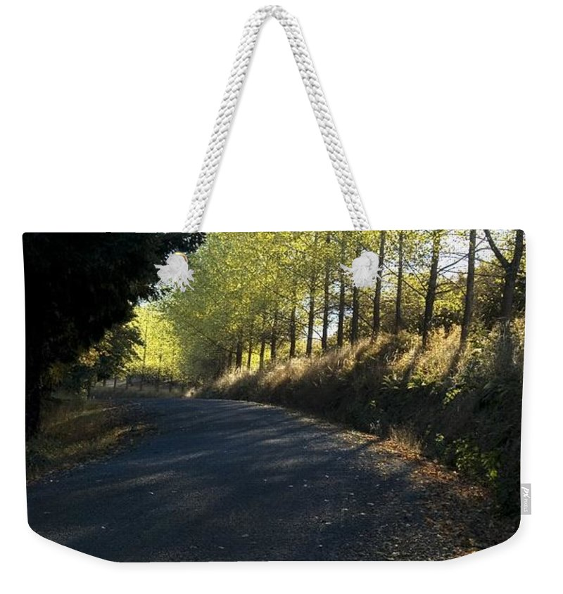 Morning Weekender Tote Bag featuring the photograph Morning Path by Sara Stevenson