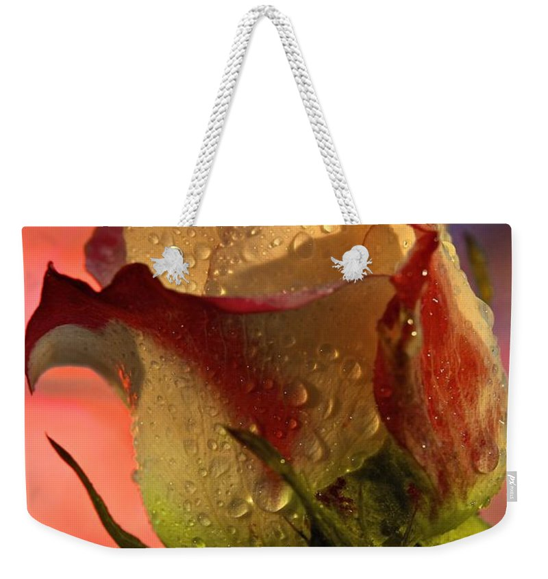 Dew Drops Weekender Tote Bag featuring the photograph Morning Splendor by DJ MacIsaac