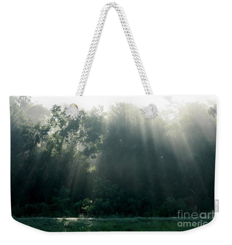 Light Weekender Tote Bag featuring the photograph Morning Sunshine by Carol Groenen