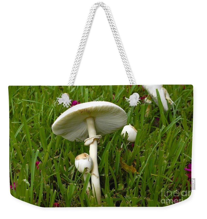 Mushrooms Weekender Tote Bag featuring the photograph Morning Surprise by David Lee Thompson